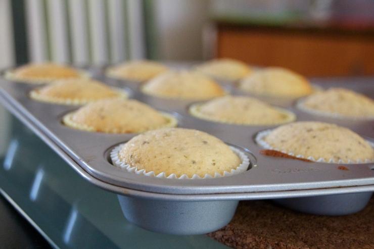 Grapefruit & Chia Seed Muffins